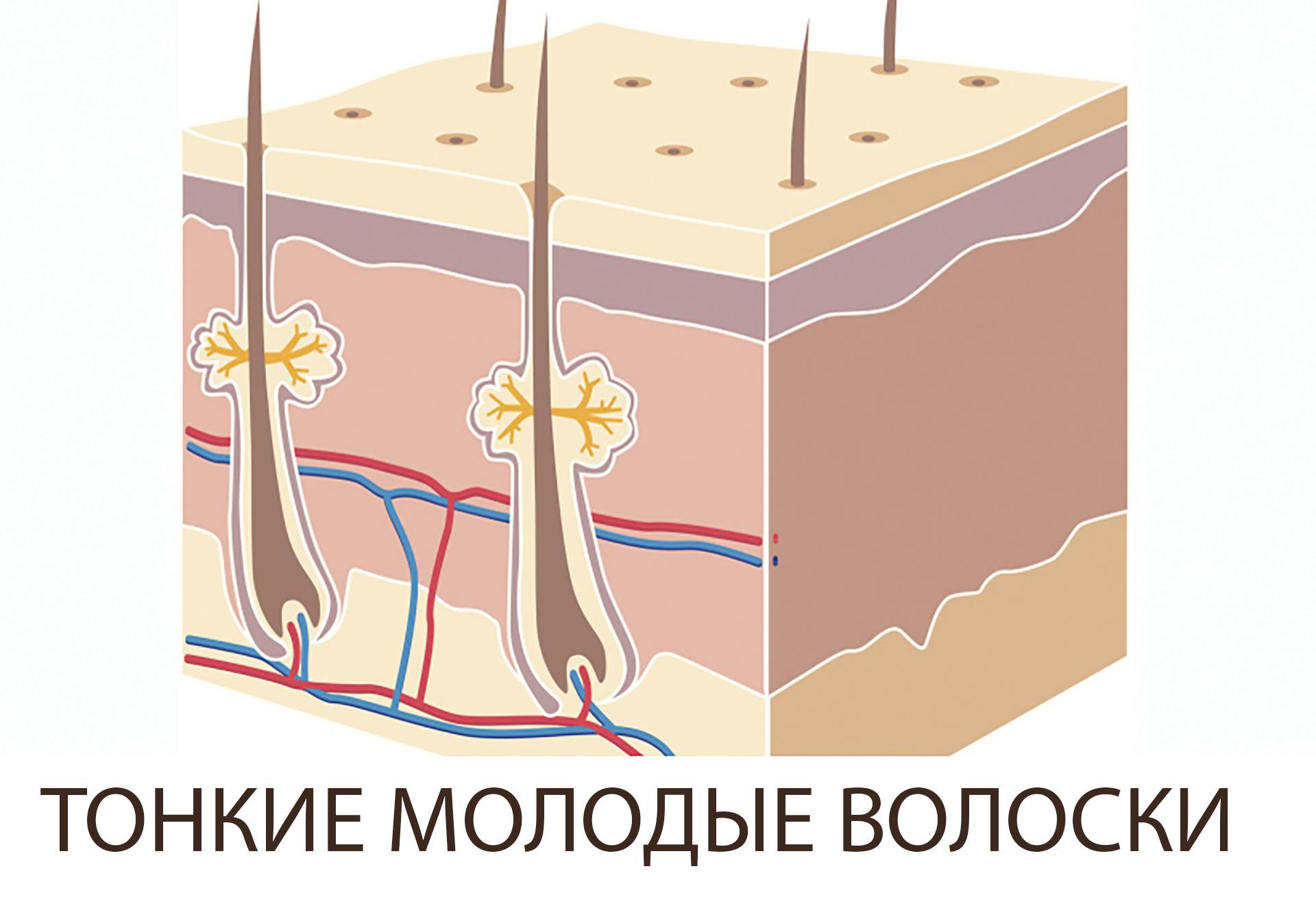 Лазерная эпиляция не стимулирует рост новых волос